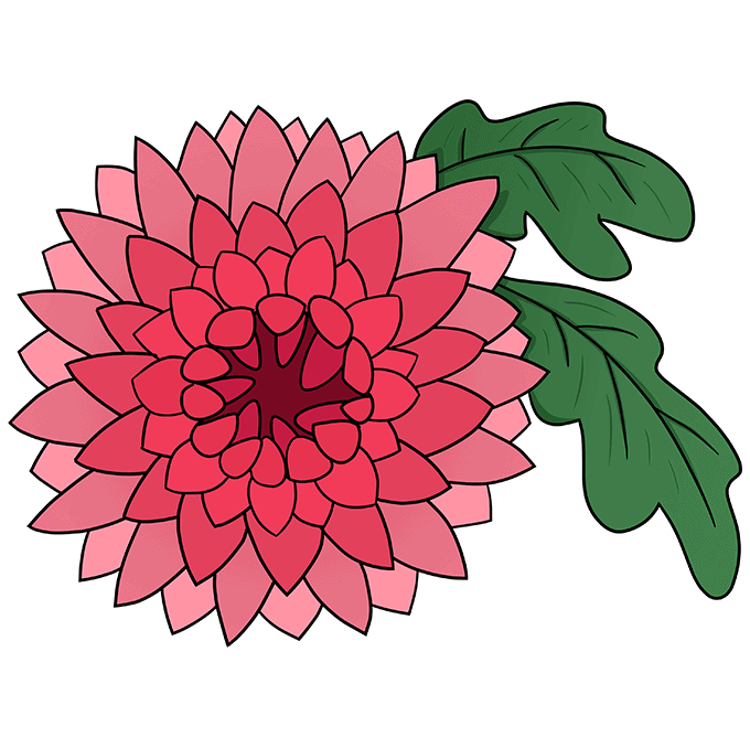 How to Draw Chrysanthemum: Step 10