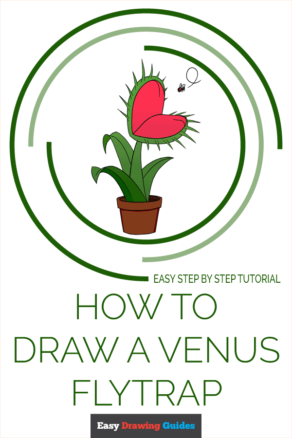 How to Draw a Venus Flytrap Pinterest Image