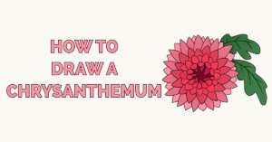 How to Draw a Chrysanthemum Featured Image