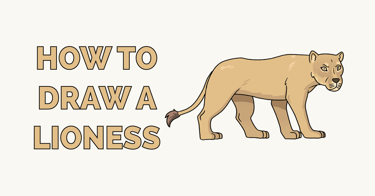 How to Draw a Lioness Featured Image