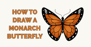 How to Draw a Monarch Butterfly Featured Image