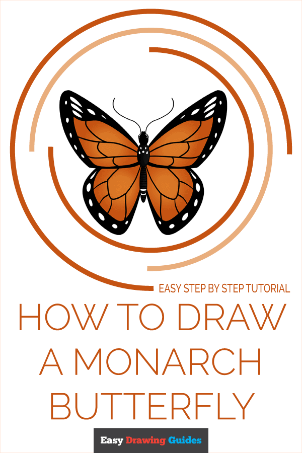 How to Draw Monarch Butterfly | Share to Pinterest