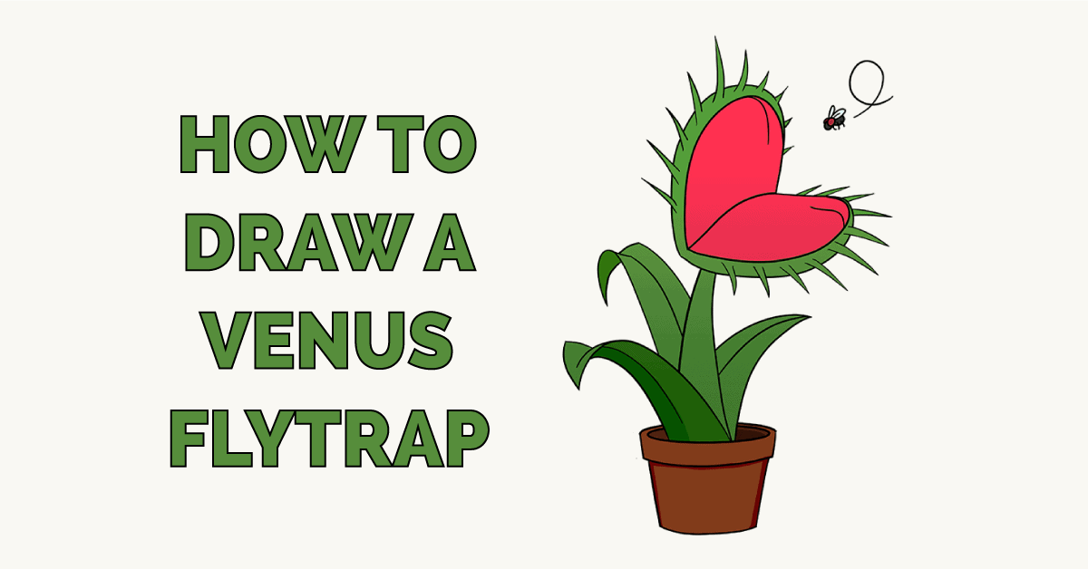 How to Draw a Venus Flytrap Featured Image
