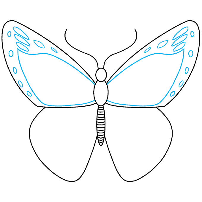 How to Draw Monarch Butterfly: Step 5