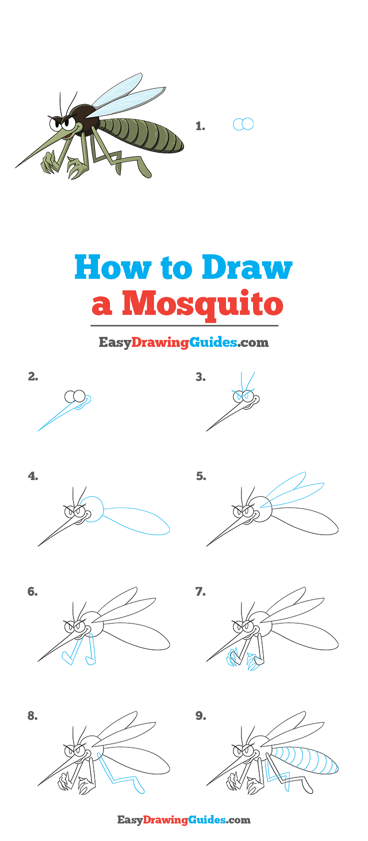 How to Draw a Mosquito Step by Step Tutorial Image