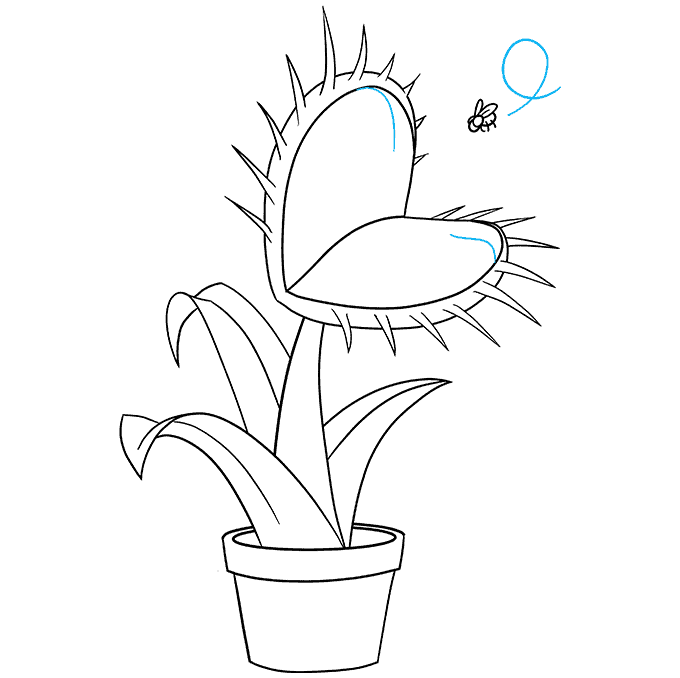 How to Draw a Venus Flytrap Step 09