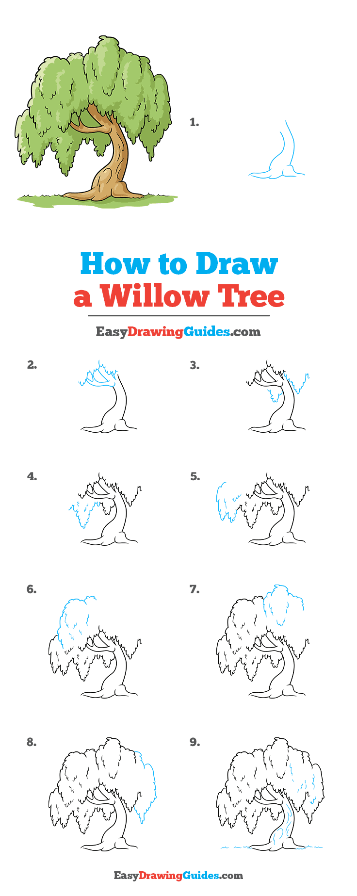 How to Draw a Willow Tree Step by Step Tutorial Image