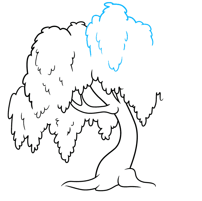 How to Draw a Willow Tree Step 07