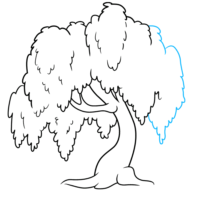 How to Draw a Willow Tree Step 08