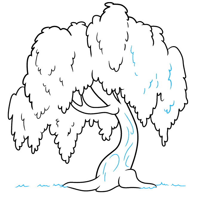 How to Draw a Willow Tree Step 09