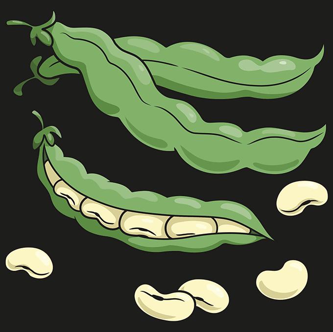Beans Step 10