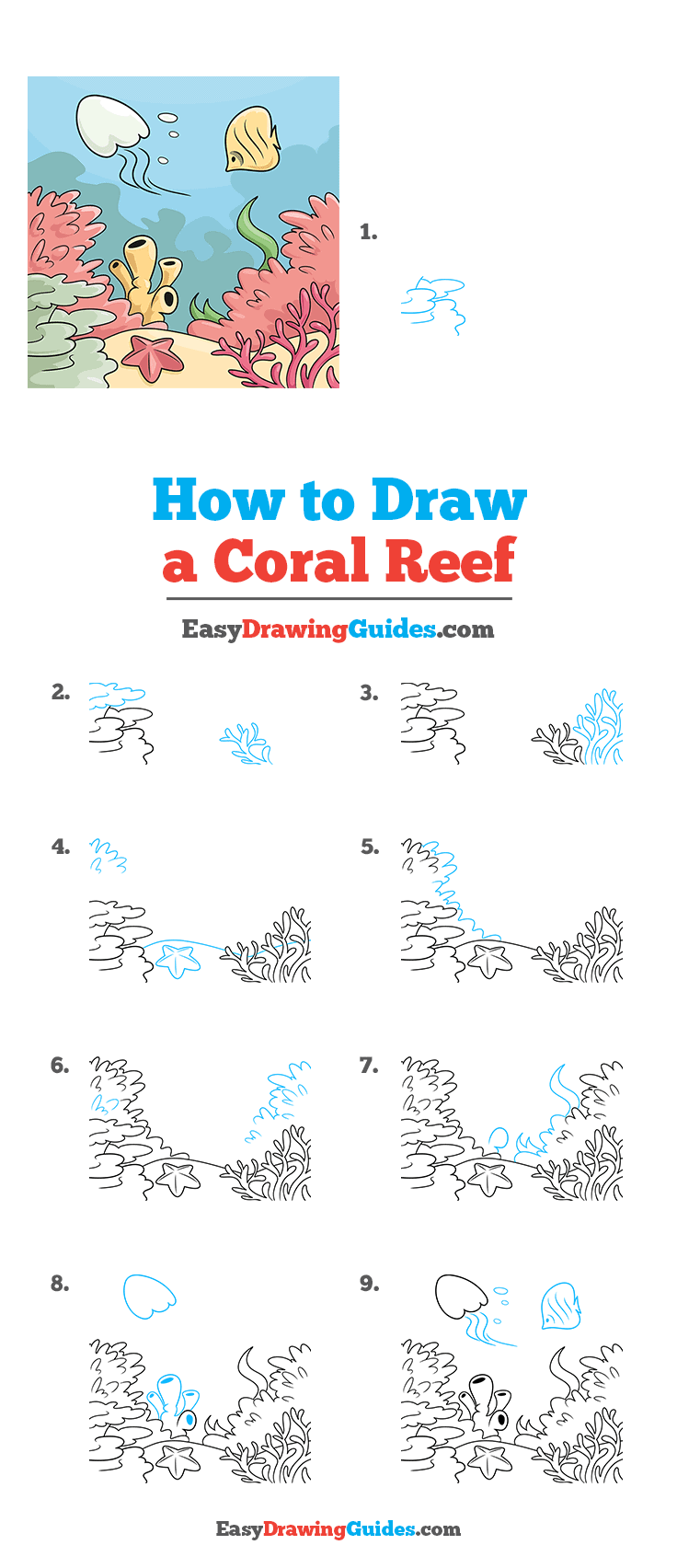 How to Draw a Coral Reef Step by Step Tutorial Image
