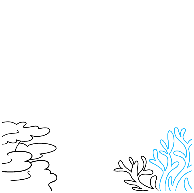 How to Draw a Coral Reef Step 03
