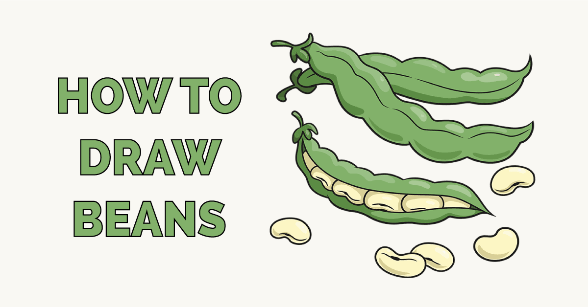 How to Draw a Beans Featured Image