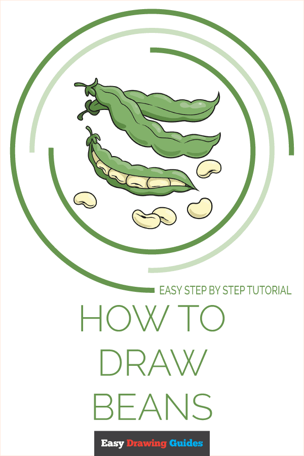 How to Draw a Beans Pinterest Image