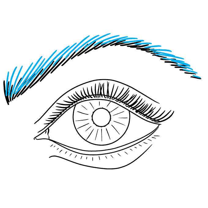 How to Draw a Realistic Eye for Beginners Step 09