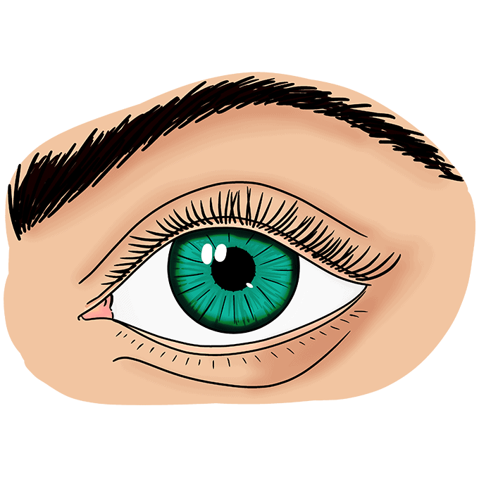 How to Draw a Realistic Eye for Beginners Step 10