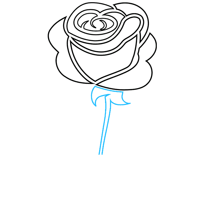 How to Draw Rose Tattoo: Step 7