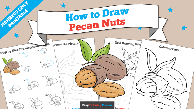 Printables thumbnail: How to Draw Pecan Nuts