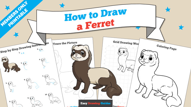 Printables thumbnail: How to Draw a Ferret