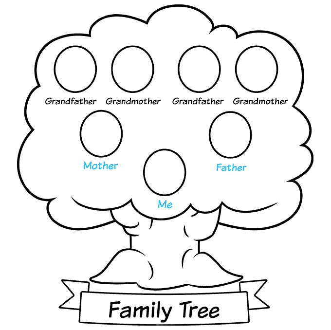 how to Draw a Family Tree Step 09