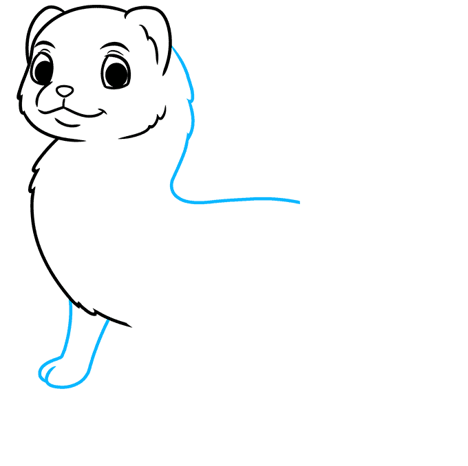 How to Draw a Ferret Step 04