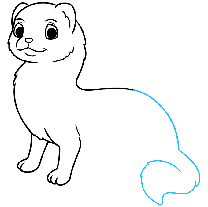 How to Draw a Ferret Step 06