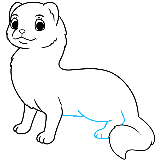 How to Draw a Ferret Step 07