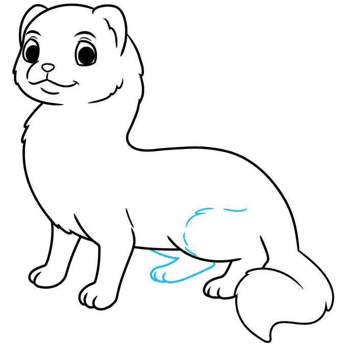 How to Draw a Ferret Step 08