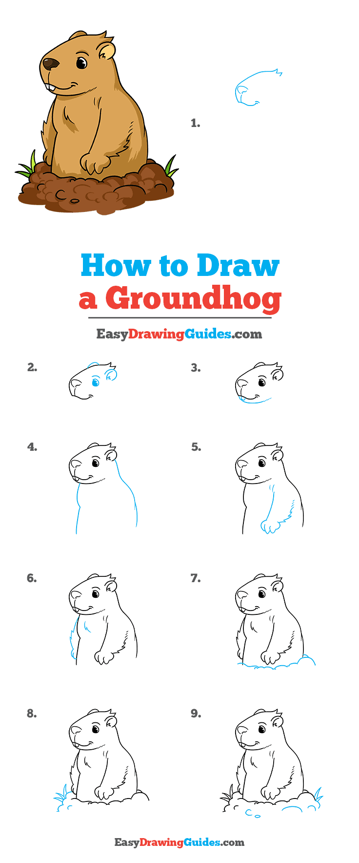 How to Draw a Groundhog Step by Step Tutorial Image