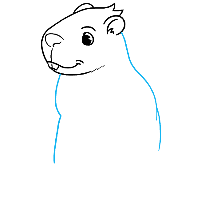 How to Draw a Groundhog Step 04