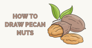 How to Draw Pecan Nuts Featured Image