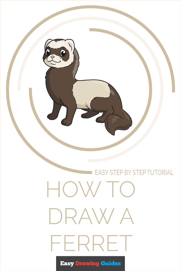 How to Draw a Ferret Pinterest Image