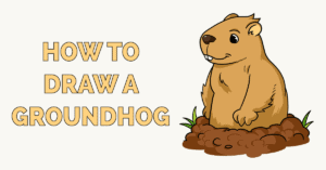 How to Draw a Groundhog Featured Image