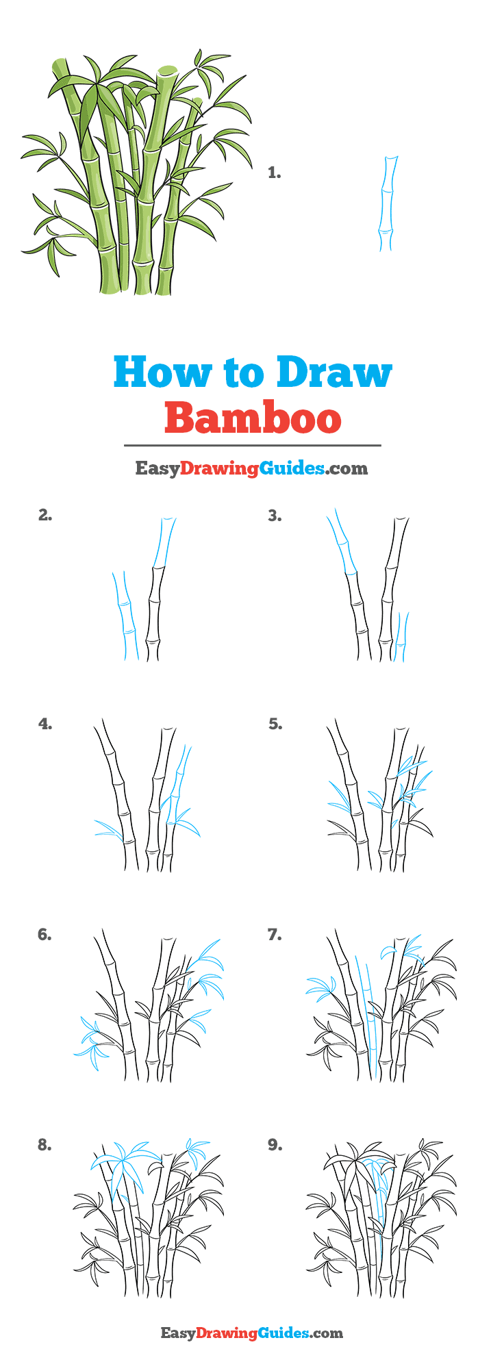 How to Draw Bamboo Step by Step Tutorial Image