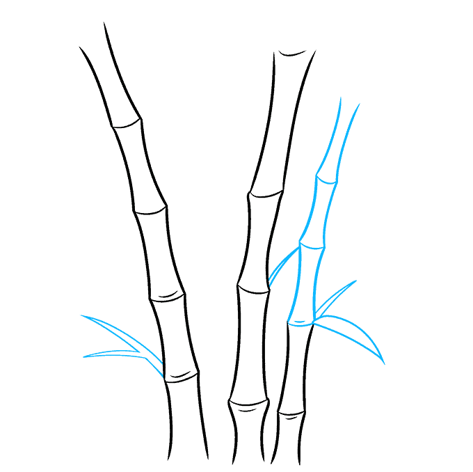 How to Draw Bamboo: Step 4