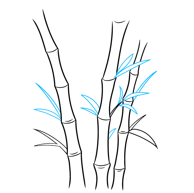 How to Draw Bamboo Step 05