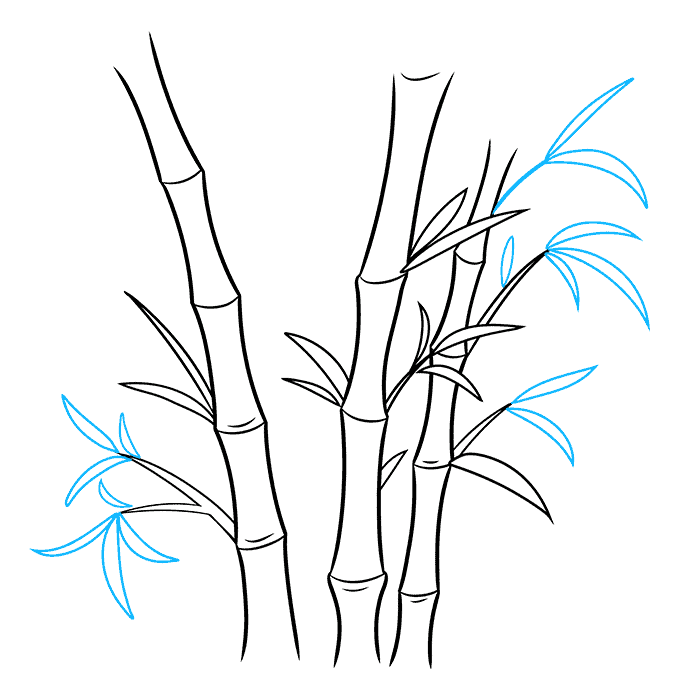 How to Draw Bamboo: Step 6