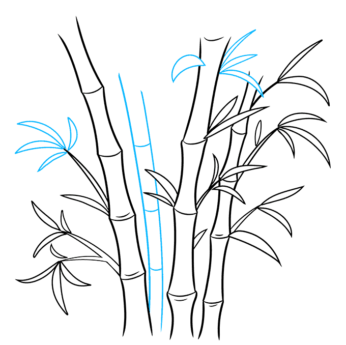 How to Draw Bamboo: Step 7