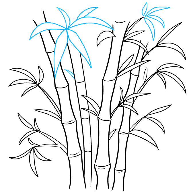 How to Draw Bamboo: Step 8
