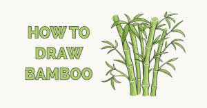 How to Draw Bamboo Featured Image