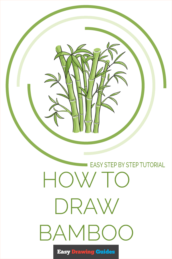 How to Draw Bamboo | Share to Pinterest
