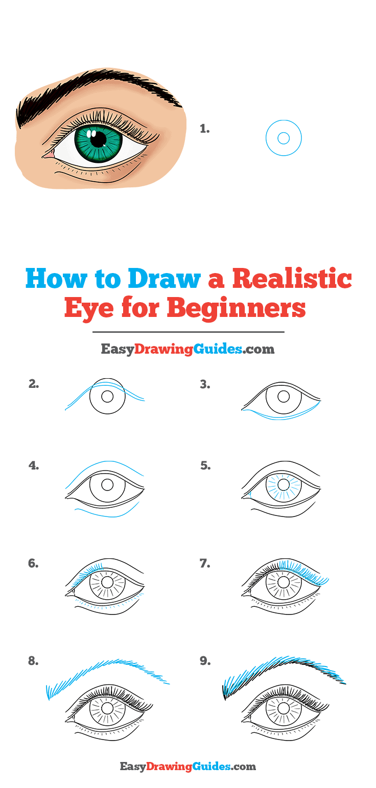 How to Draw a Realistic Eye for Beginners Step by Step Tutorial Image