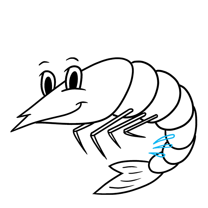 How to Draw a Shrimp Step 08