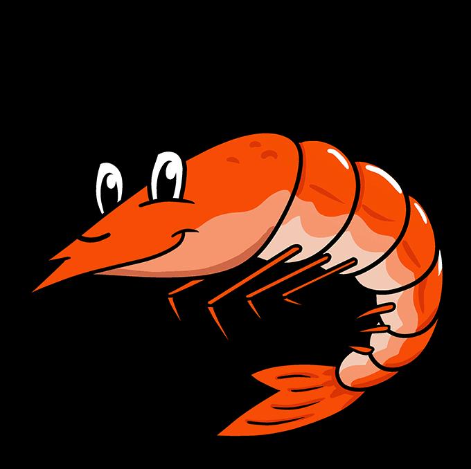 How to Draw a Shrimp Step 10