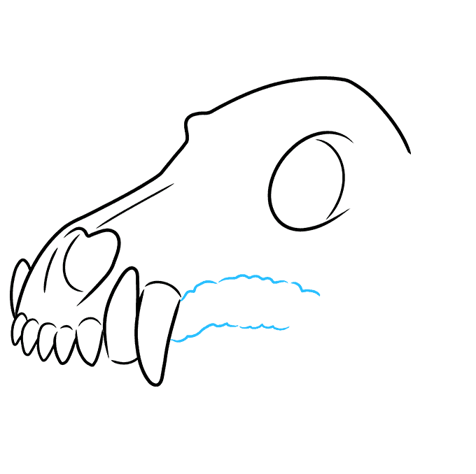 How to Draw Wolf Skull: Step 5