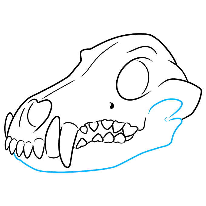 How to Draw Wolf Skull: Step 9