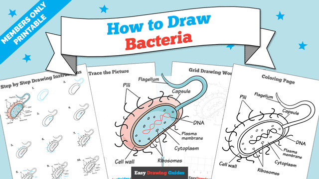 Printables thumbnail: How to Draw Bacteria