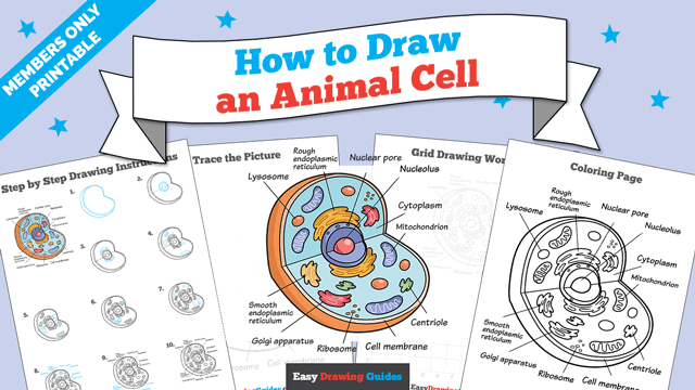 Printables thumbnail: How to Draw an Animal Cell