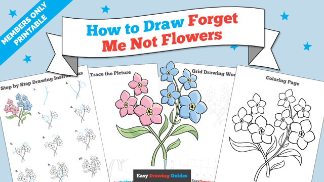 Printables thumbnail: How to Draw Forget Me Not Flowers